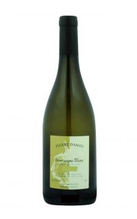 Domaine Pierre Damoy Bourgogne Blanc Les Ravry 2013